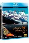 Alaska / Wielkie Migracje