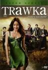 Trawka - Sezon 6