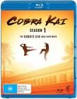 Cobra Kai - sezon 1