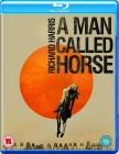Człowiek zwany koniem