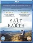 Sól ziemi