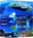 Perła oceanów | Rekiny | Delfiny i wieloryby