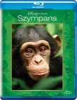 Disney Nature: Szympans