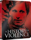 Historia przemocy