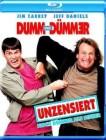 Głupi i głupszy (1994)