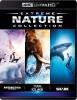 IMAX Nature