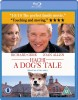 Hachi - A Dog's Tale