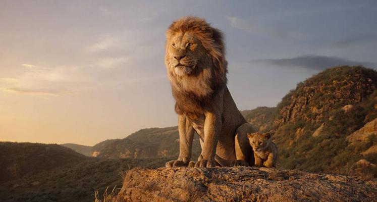 """Filmowy """"Król Lew"""" nie dorównał animacji – krytycy wydali werdykt"""