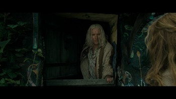 harry_potter_and_the_deathly_hallows_part_1_14.jpg