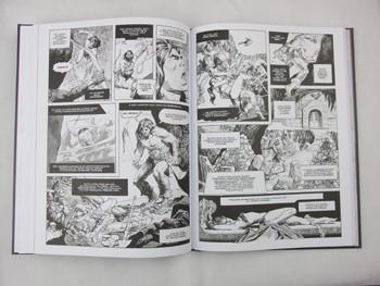 Conan Barbarzyńca tom 2: Czarny Kolos